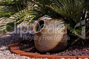 Mexican pottery under palm tree