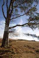 Mulch Fire at Condo Development