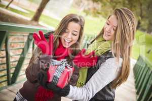 Mixed Race Women Having Gift Exchange