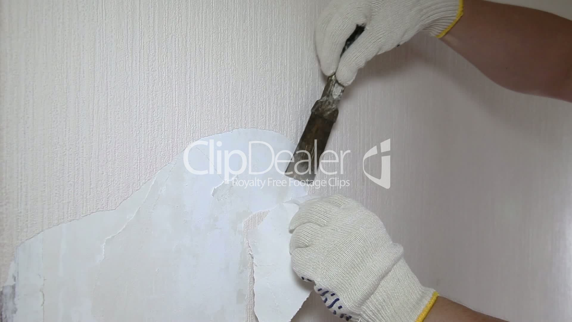 Man Removing Old Wallpaper With The Tool Royalty Free Video And