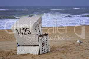 Strandkorb an der Nordsee auf Sylt mit Möwe