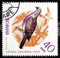 Postage stamp Romania 1965 Turtle Dove, Bird