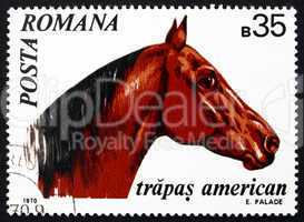 Postage stamp Romania 1970 American Trotter, Horse