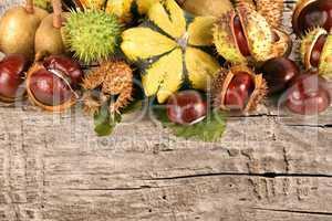 herbstlich früchte