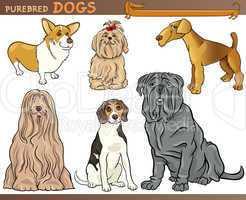 purebred dogs cartoon illustration set