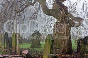 Spooky old cemetery on a foggy day