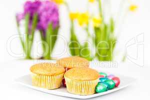 Muffins mit Ostereiern, Muffins with Easter eggs