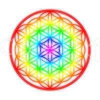 Blume des Lebens - Regenbogen Halo Effekt auf Weiß