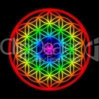 Regenbogen Schöpfungsmuster - Blume des Lebens