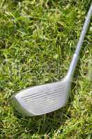 Golf club driver laying in grass