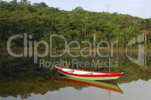Boat on a jungle river