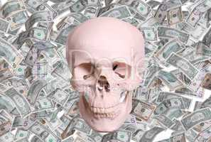 skull and dollars
