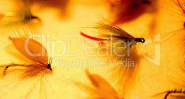 Fly Fishing: Wet Flies
