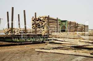 Logs in Transit 3