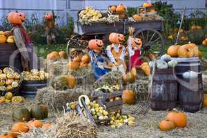 Halloween dressed up garden