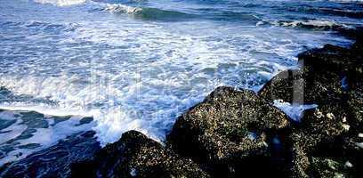 Seascape; Ocean Surf