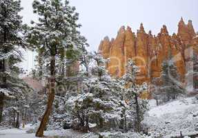 SNOWING IN BRYCE CANYON