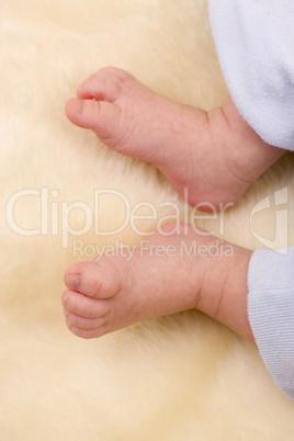 Feet of baby boy