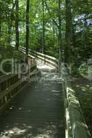 Foster Falls Recreation Area