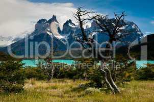 A view across Lago Peho_ to the Curenos del Paine, Torres del Paine National Park, Chile