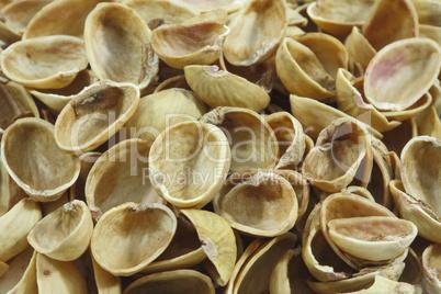 Empty pistachios shells