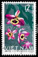 postage stamp vietnam 1966 the noble dendrobium, orchid