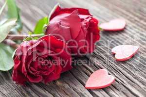 Rosen und Herzen / roses and hearts