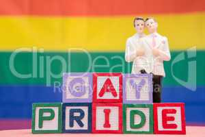 Blocks spelling gay pride with gay groom cake topper