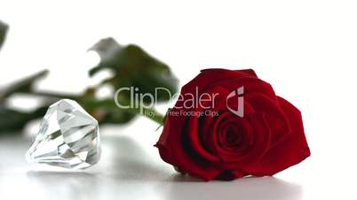 Diamond spinning beside red rose
