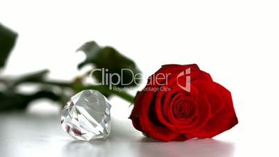 Diamond spinning beside red rose on white background