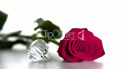 Diamond spinning beside pink rose