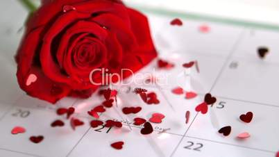 Confetti falling on red rose and calander showing Valentines day