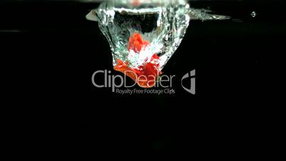 Scotch bonnet pepper dropping into water and floating