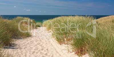 Weg zum Strand durch Dünen auf Sylt