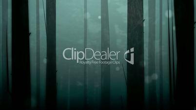 Spooky Forest Loop HD