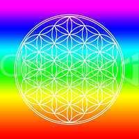 Chakra Farben Blume des Lebens 3