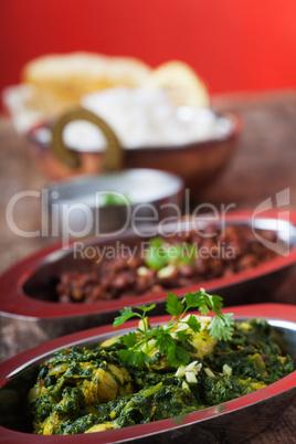 indisches Murgh Palak-Curry-Gericht