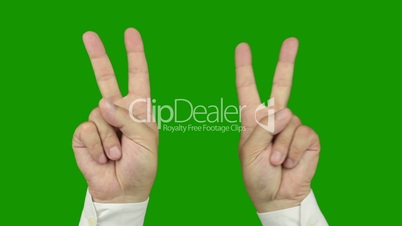 Hand sign: The symbol of victory. Alpha channel is included