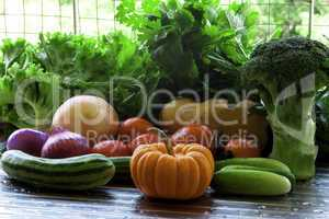 Vegetables Set.