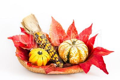 herbstdekoration, decoration in autumn