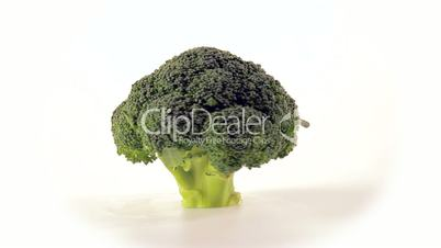 Broccoli front view