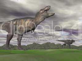 Tyrannosaurus shouting at another - 3D render
