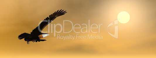 Eagle by sunset - 3D render