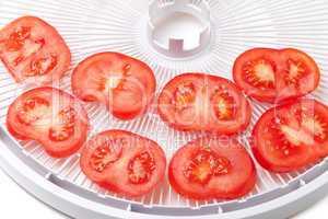 Fresh tomato on food dehydrator tray, ready to dry