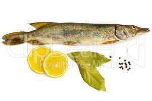 Fresh pike with lemon