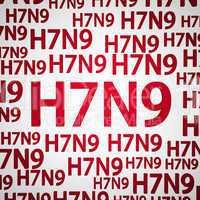 H7N9 flu or influenza virus