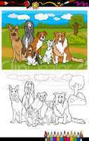 dogs breeds cartoon for coloring book