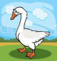 goose bird farm animal cartoon illustration