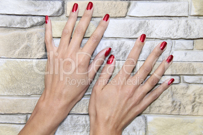 Female Hands - after manicure treatment