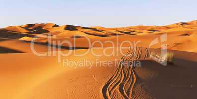 Path on dunes of Sahara desert